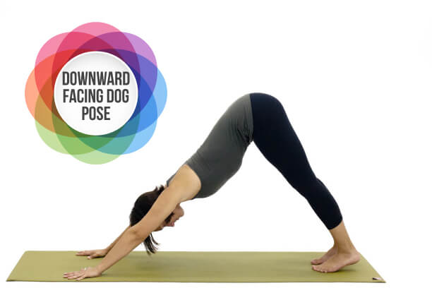 Downward Facing Dog yoga to reduce belly fat