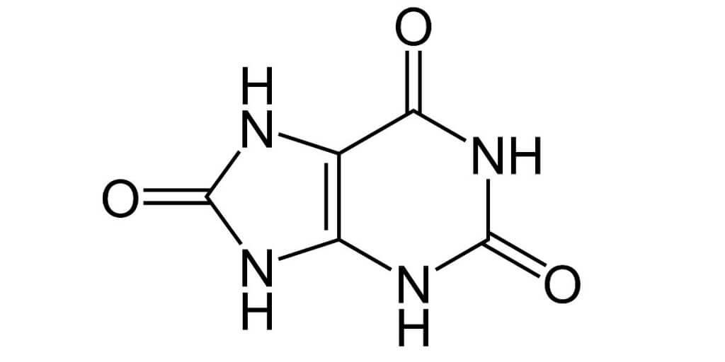 Manage Uric Acid Levels